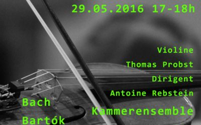 Concert of 29th Mai 2016
